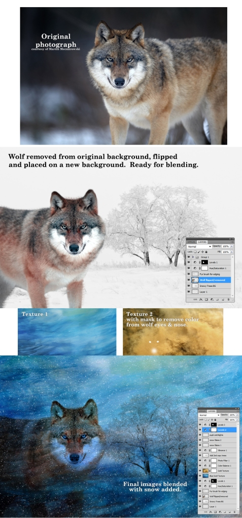 Image_2_ExampleOverlays_01132014