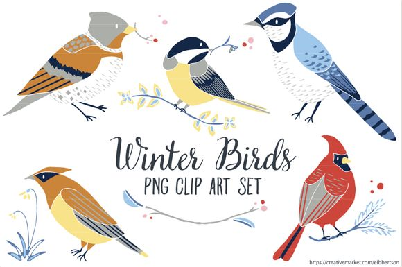 FireShot Screen Capture #409 - 'Winter Birds Clip Art PNG ~ Illustrations on Creative Market' - creativemarket_com_trinketallsorts_421449-Winter-Birds-Clip-Art