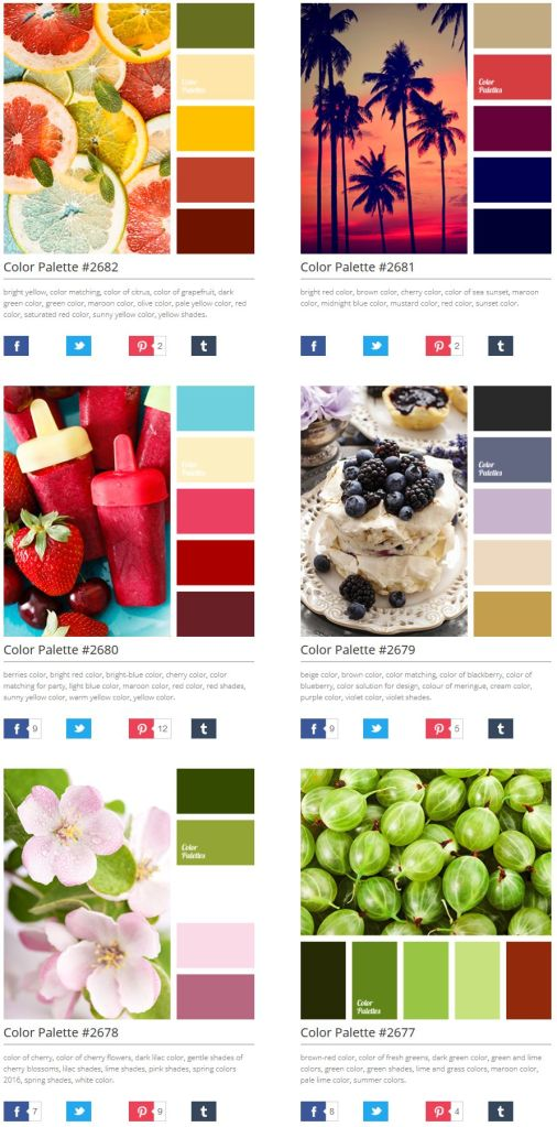 FireShot Screen Capture #557 - 'Color Palette Ideas I ColorPalettes_net' - colorpalettes_net
