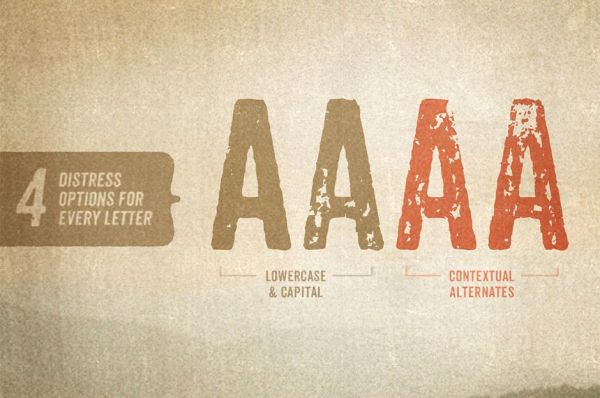 FireShot Screen Capture #581 - 'Anodyne Font Family_ 77% Off Intro Special « Design Cuts' - www_designcuts_com_product_anodyne-font-family