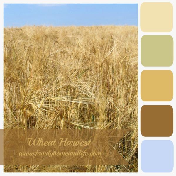 harvest 07