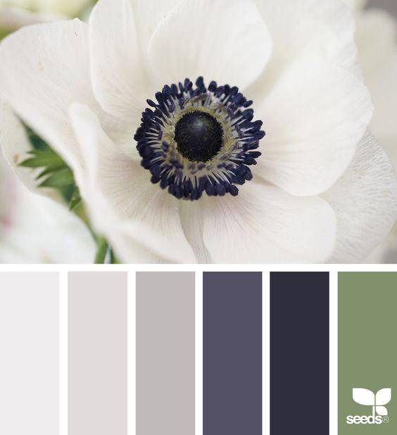 kleur-5