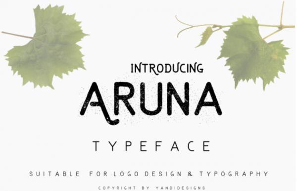 the-aruna-font-by-thehungryjpeg-thehungryjpeg-com