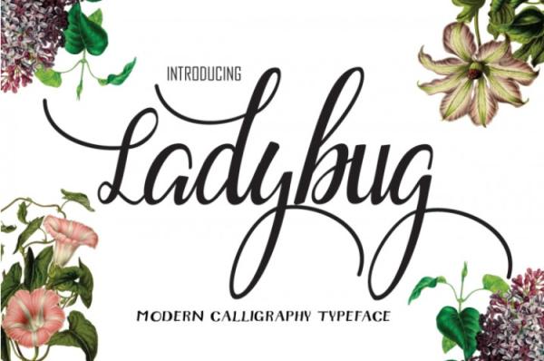 the-free-ladybug-font-by-thehungryjpeg-thehungryjpeg-com