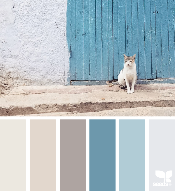 1_11_2creaturecolor_judith